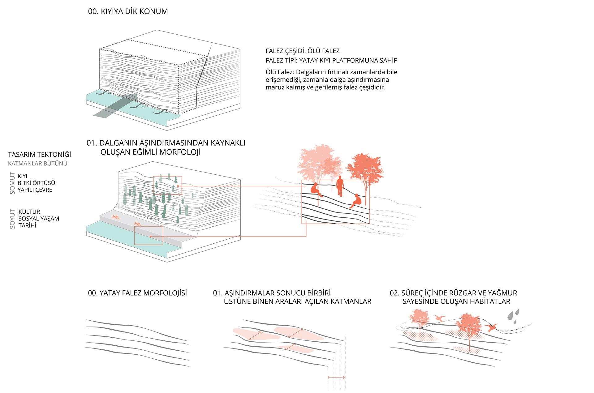 Biomimikli Tasarım